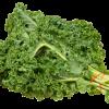 Kale4